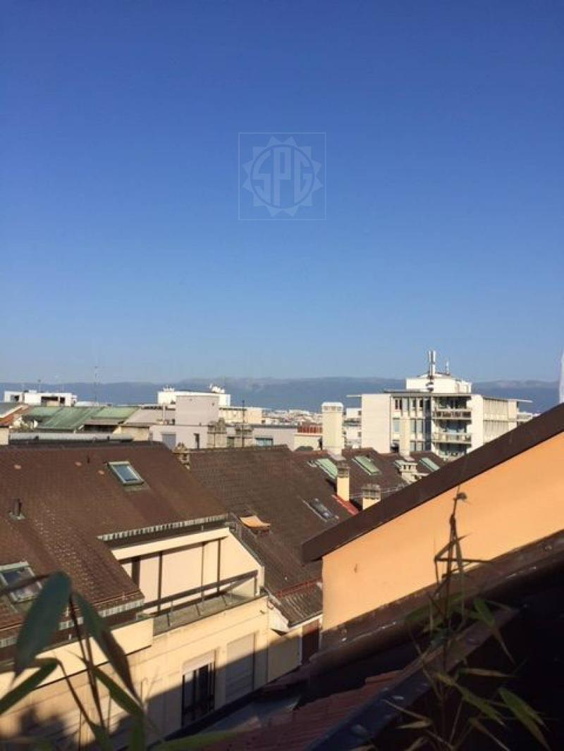 Beautiful rooftop apartment with lake view and balcony in Eaux Vives