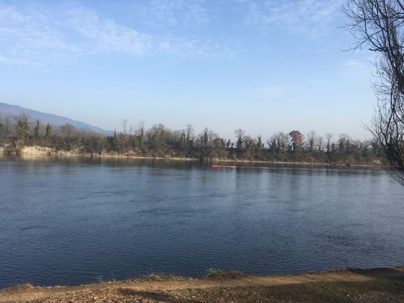 ....Rudern auf dem Rhein