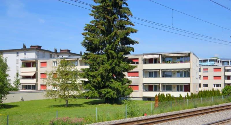 Moderne Wohnung im Grünen