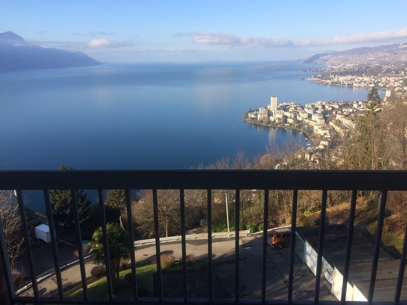 Splendide vue sur Montreux, Chillon et le panorama du Leman (1)