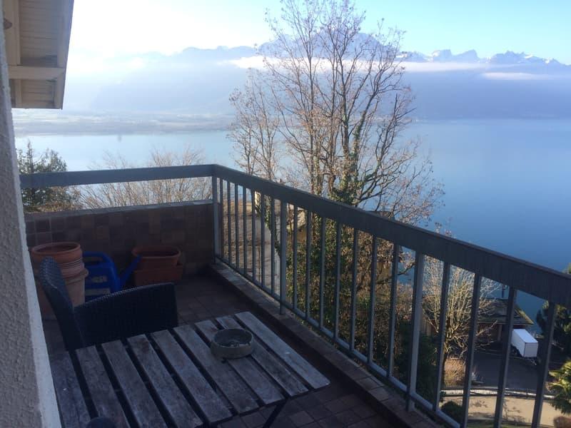 Splendide vue sur Montreux, Chillon et le panorama du Leman (2)