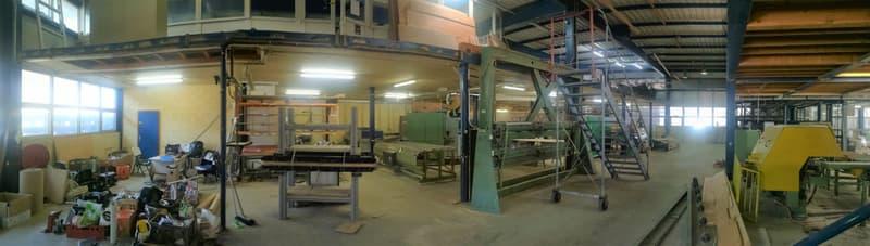 Halle Industrielle à louer de 1'586 m2 à Orbe