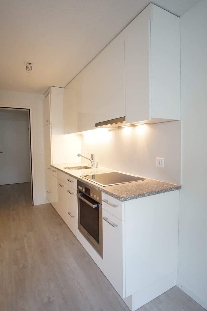 schöne, neu renovierte, ruhig gelegene Wohnung nähe See