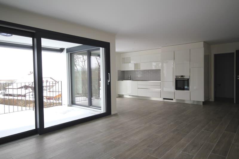 Magnifique appartement de 2,5 pièces rez de chaussée grande terrasse et jardin (3)