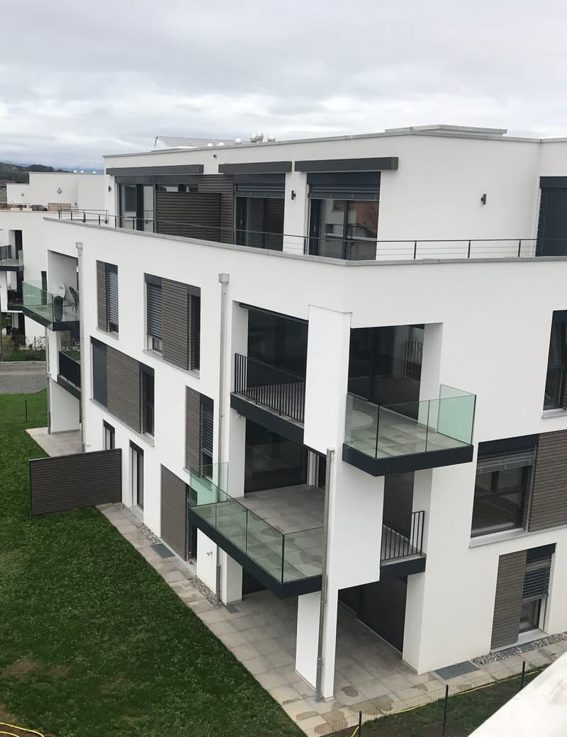 Magnifique appartement de 2,5 pièces rez de chaussée grande terrasse et jardin (2)