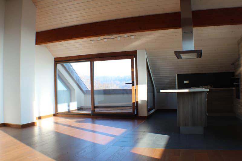 Spacieux duplex de 4,5 pièces en attique avec vue sur le lac / 160 m2 (2)