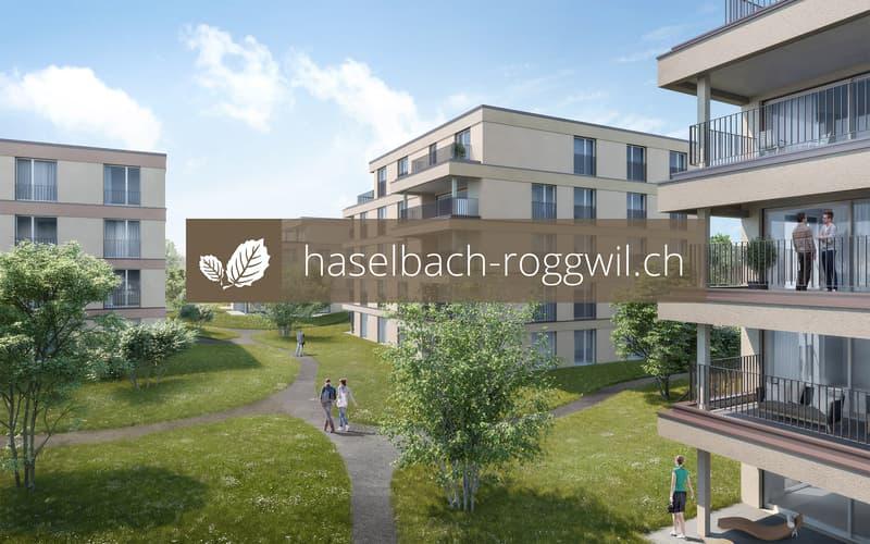 haselbach-roggwil.ch
