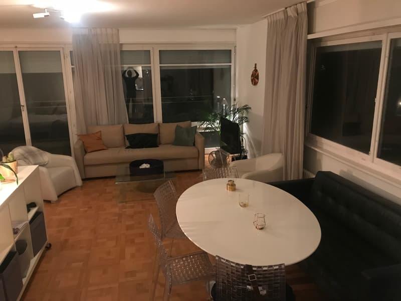 Appartement 1.5 pièces meublé au centre de Genève (1208) (1)