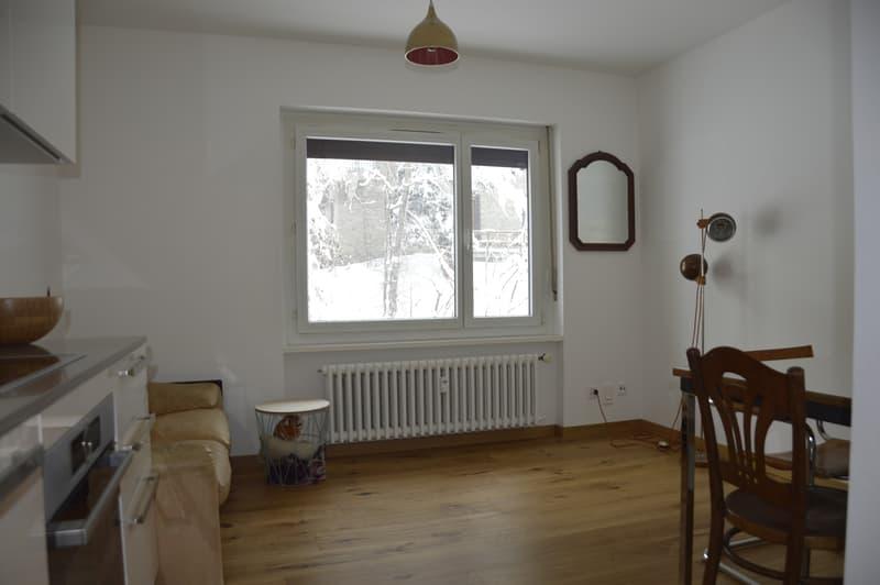 Helle und neu renovierte 2-Zimmer-Wohnung