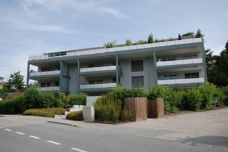 Modere und stilvolle 4.5 Attikawohnung mit grosser Terrasse 90 m2