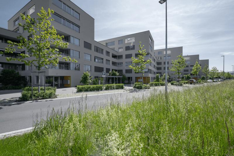 Busswilstrasse-Lyss-12.jpg