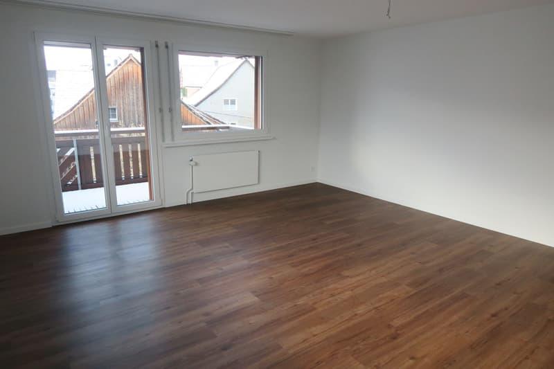 Schöne, renovierte Wohnung im Zentrum
