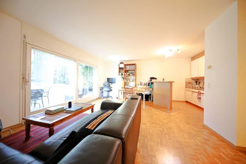 Magnifique Appartement 2 Pièces Au Centre du Village de Mies