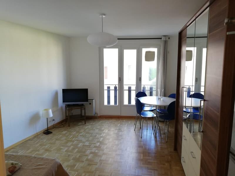 Studio meublé rénové 25m2 - gare et commerces très proches