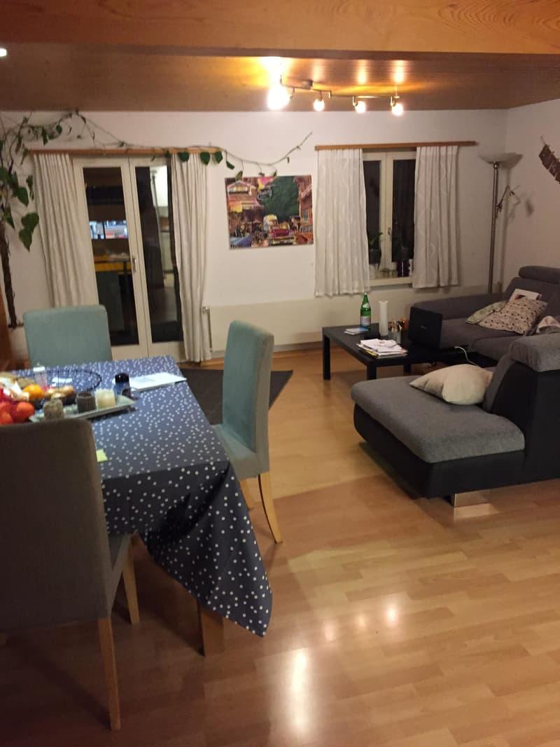 Schöne renovierte 3.5 Zimmerwohnung mit Hallwilerseeblick (4)