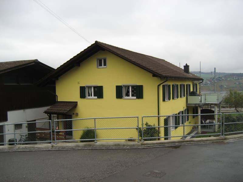 Schöne renovierte 3.5 Zimmerwohnung mit Hallwilerseeblick (1)
