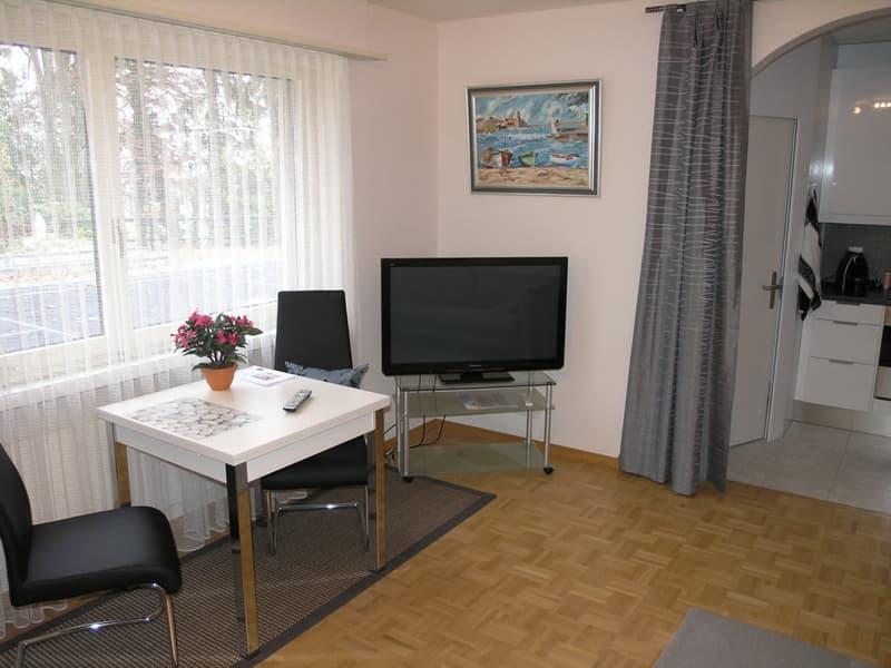 2 Zimmer-Wohnung (möblliert)