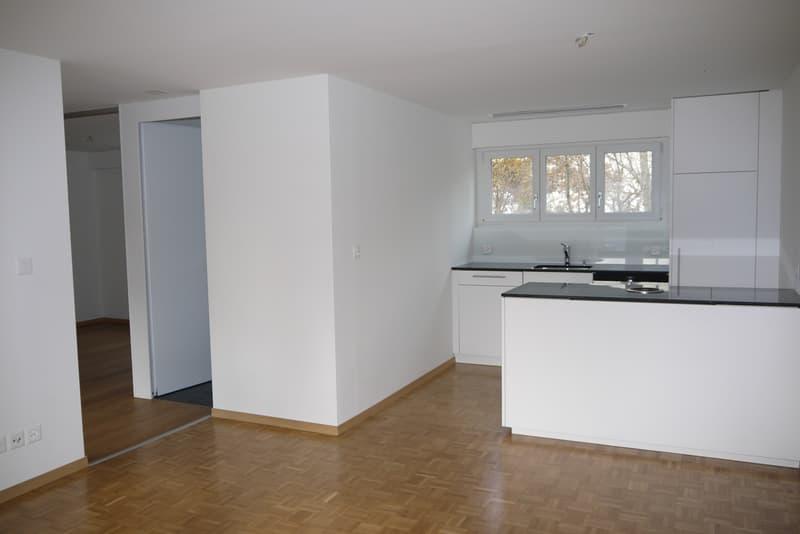 renovierte 3-Zimmer-Wohnung im Zentrum von Oberägeri