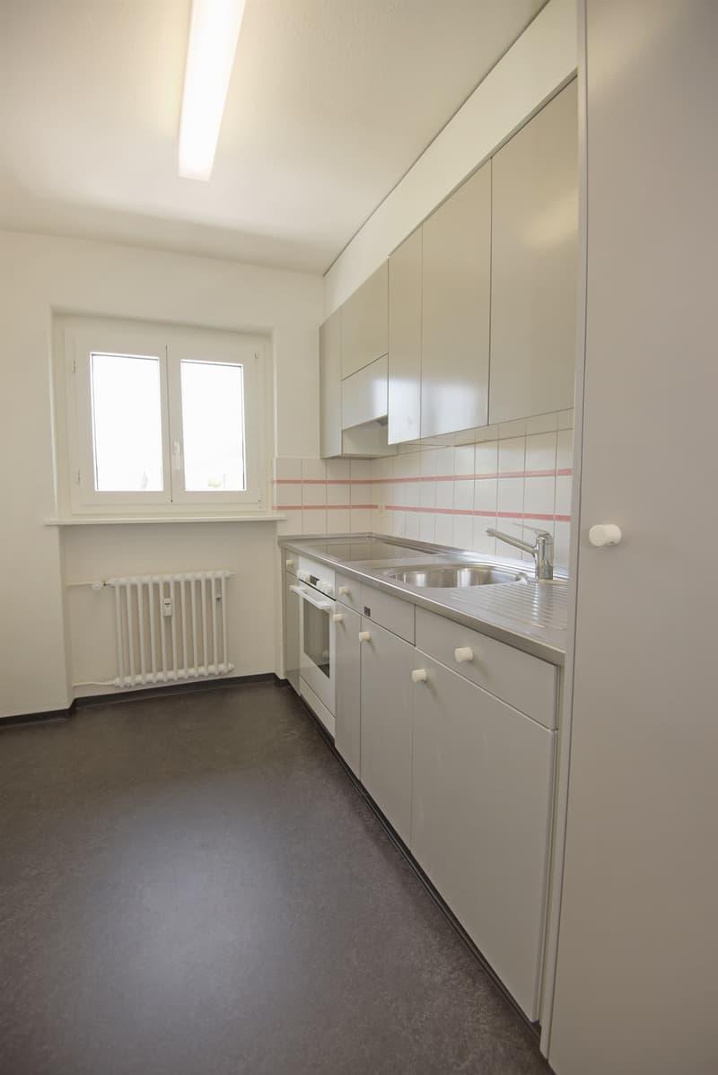 Neues Zuhause in Baar gesucht? (2)