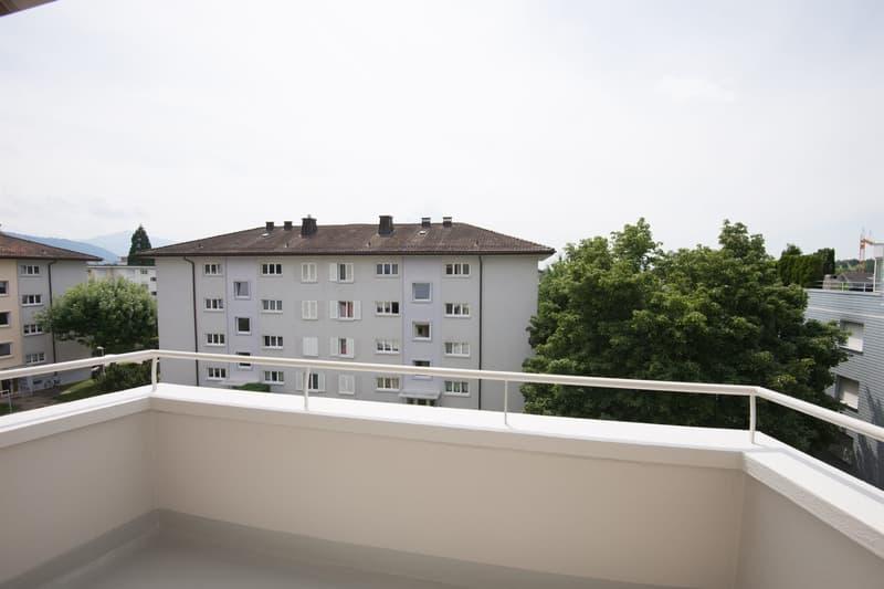 Neues Zuhause in Baar gesucht? (4)