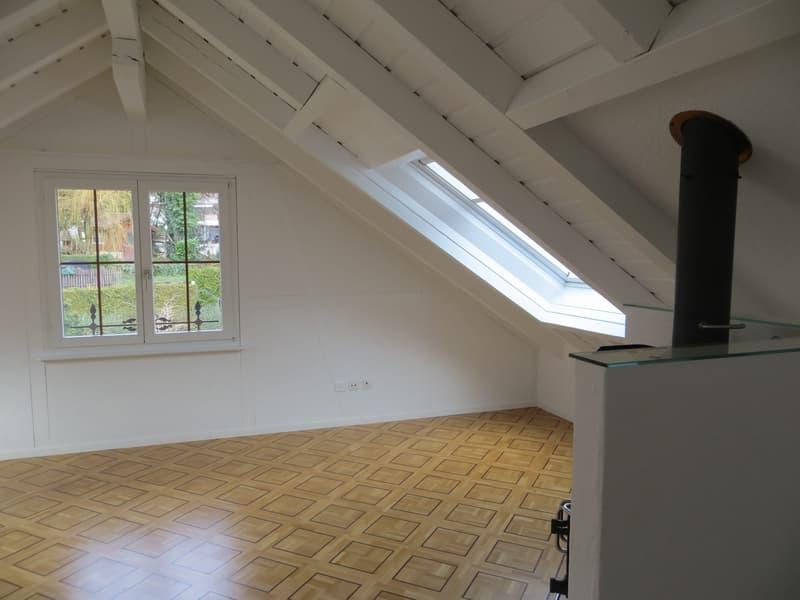 Grosszügige Maisonette Wohnung im Attika Geschoss (3)