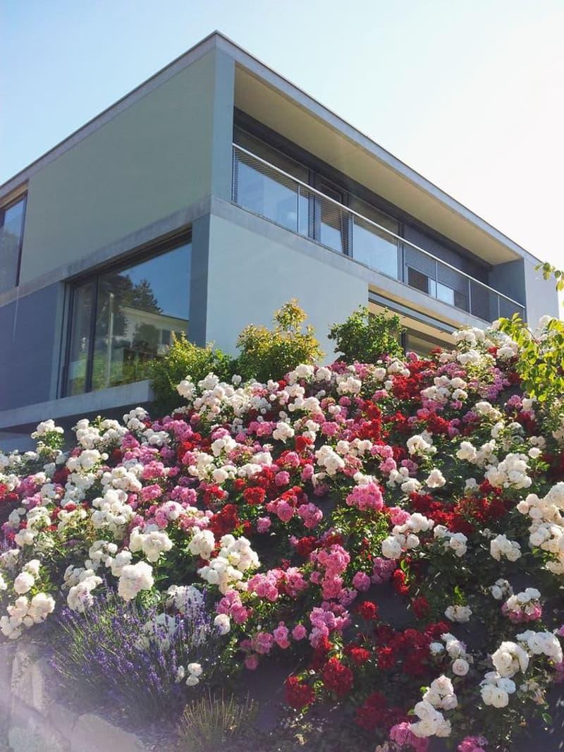 Villa individuelle contemporaine de 7,5 pièces avec vue panoramique
