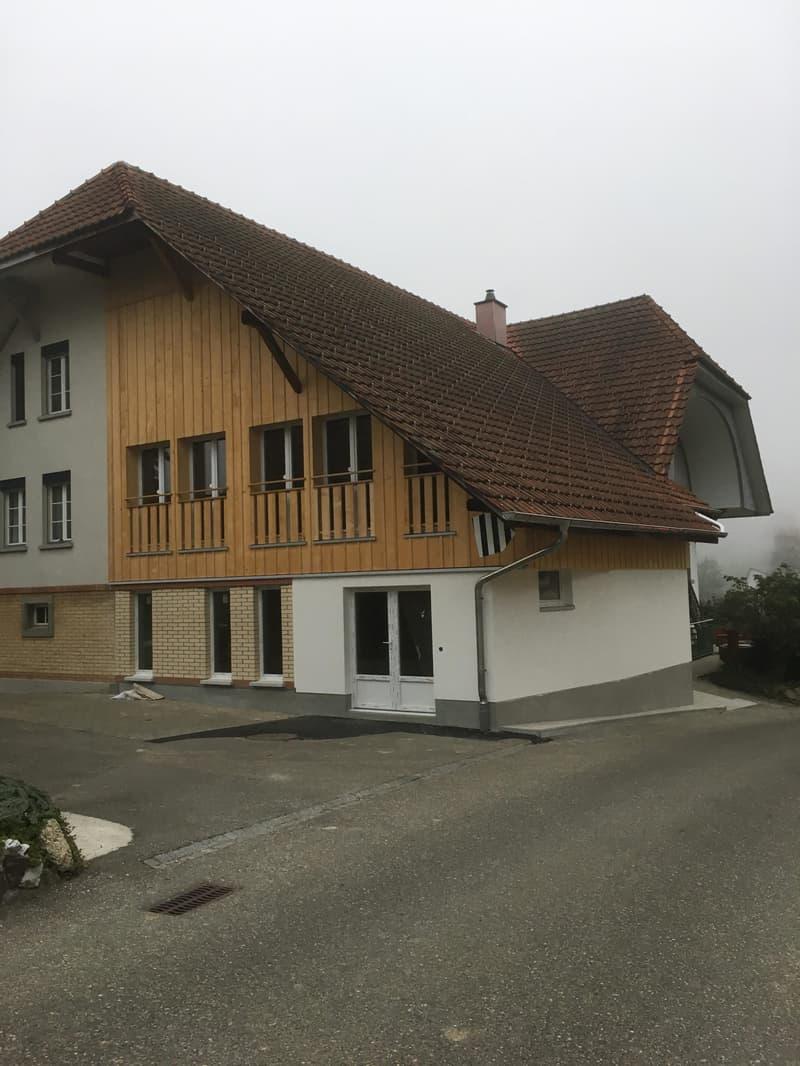 Originelle 2,5-Zi-Studio-Wohnung, EG neu in Altbau