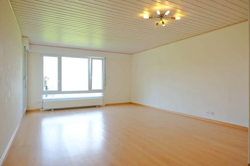 Magnifique appart 2,5 p / 1 chambre / 1 SDB / terrasse avec vue
