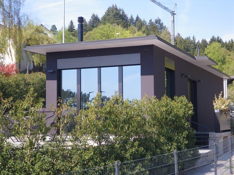 Top modernes und exklusives möbliertes Haus auf der Breite /Modern powerhouse Schaffhausen Breite