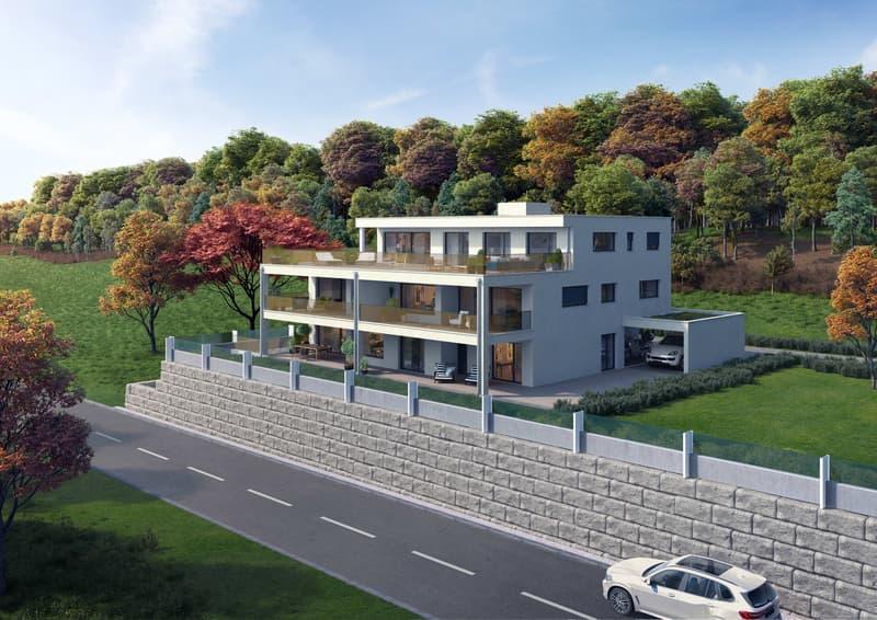 Außergewöhnliche Luxuriöse 3 1/2 - 5 1/2 Zimmer-Wohnungen (1)