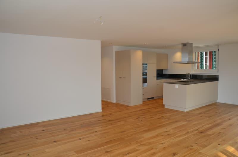 Schöne 3 1/2 Zimmer Wohnung in umgebautem Bauernhaus