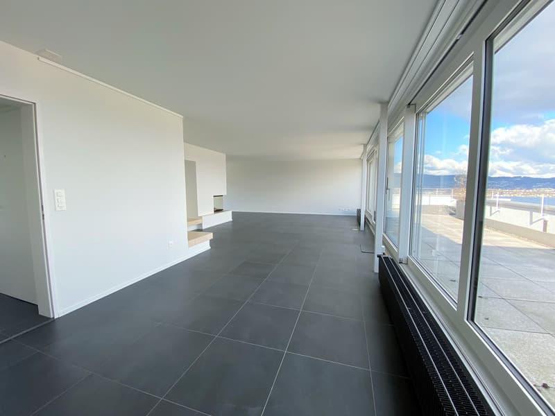 schöne 5.5-Zimmerattikawohnung mit grosser Terasse an ruhiger und gepflegter Lage
