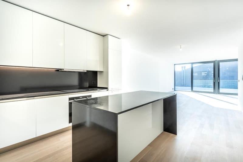 Appartement neuf de 3.5 pces / 102m2 / Baies vitrées (3)