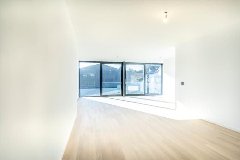 Appartement neuf de 3.5 pces / 102m2 / Baies vitrées (2)