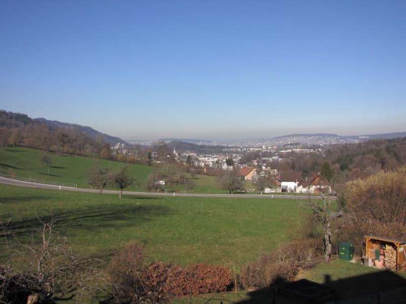 Ausblick bis Zürich