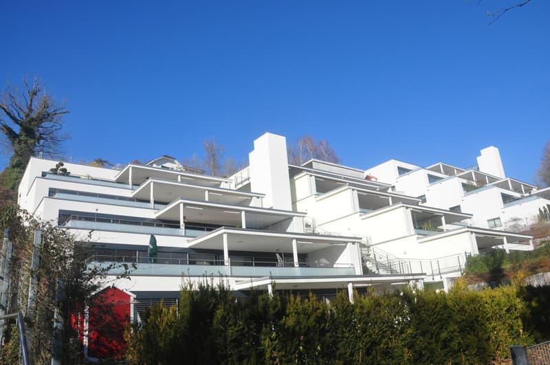 Grosse Terrassenwohnung mit traumhafter Aussicht 4.5-Zimmer in der Nähe von Sursee und ruhig gelegen