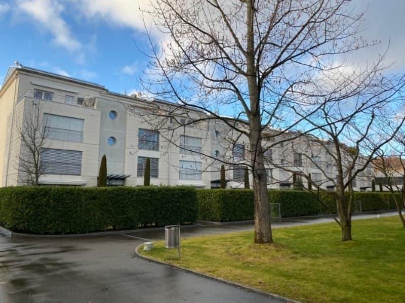Appartement de 5½ pièces en duplex au rez avec jardin et cheminée.