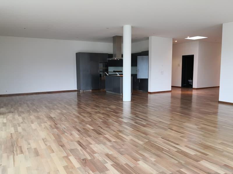 zu vermieten hochwertige, grosszügige 4.5-Zimmer Wohnung in Arbon
