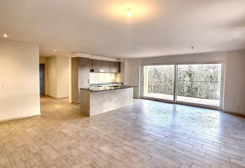 Appartement 3.5 pces avec terrasse et vue dégagée à Constantine / VD