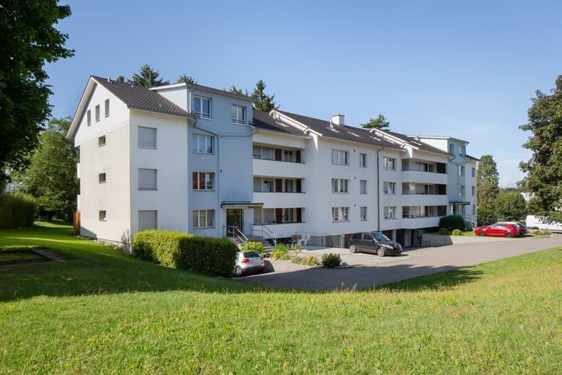 Renovierte 4.5-Zimmerwohnung mit Blick ins Grüne