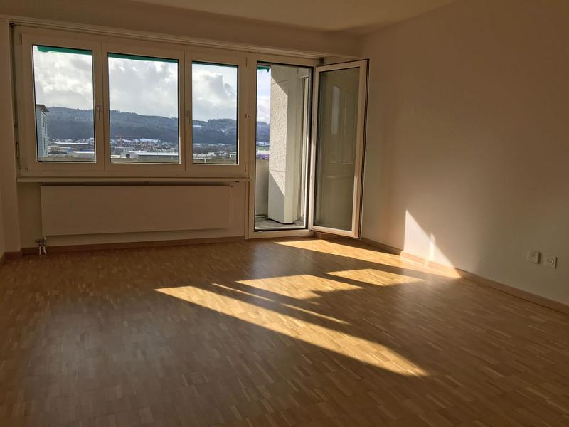 Grosse und günstige Wohnung mit schönem Blick ins Grüne (2)