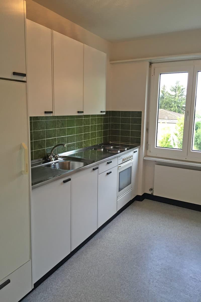 Grosse und günstige Wohnung mit schönem Blick ins Grüne (4)