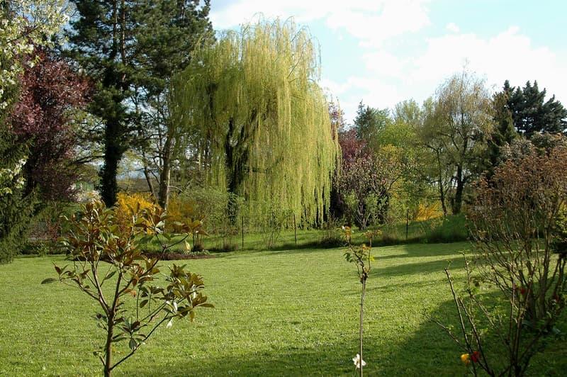 Versoix - Au calme, belle villa de 8 pièces de plain-pied, 3 chambres