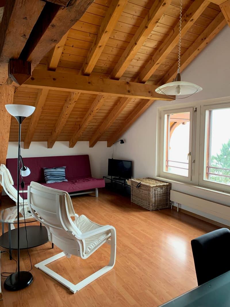 Magnifique appartement meublé à Glion (1)