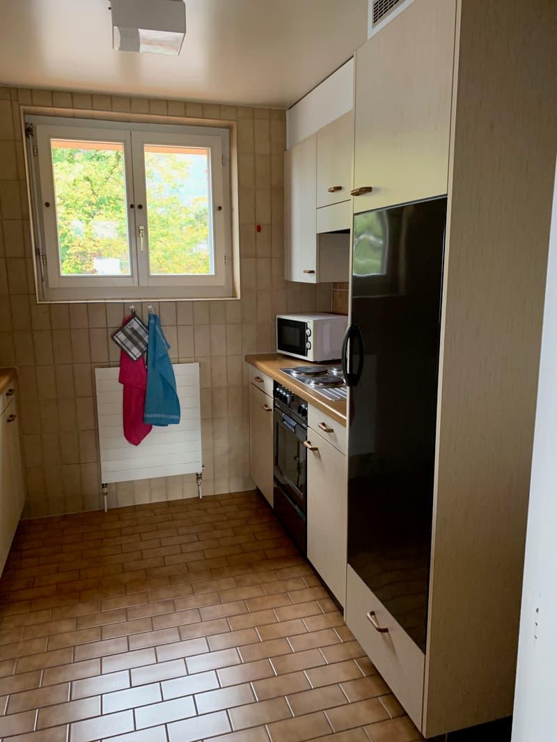 Magnifique appartement meublé à Glion (4)