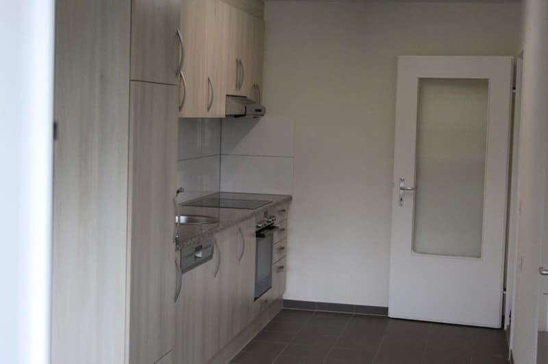 Frisch renovierte 3.5 Zimmerwohnung