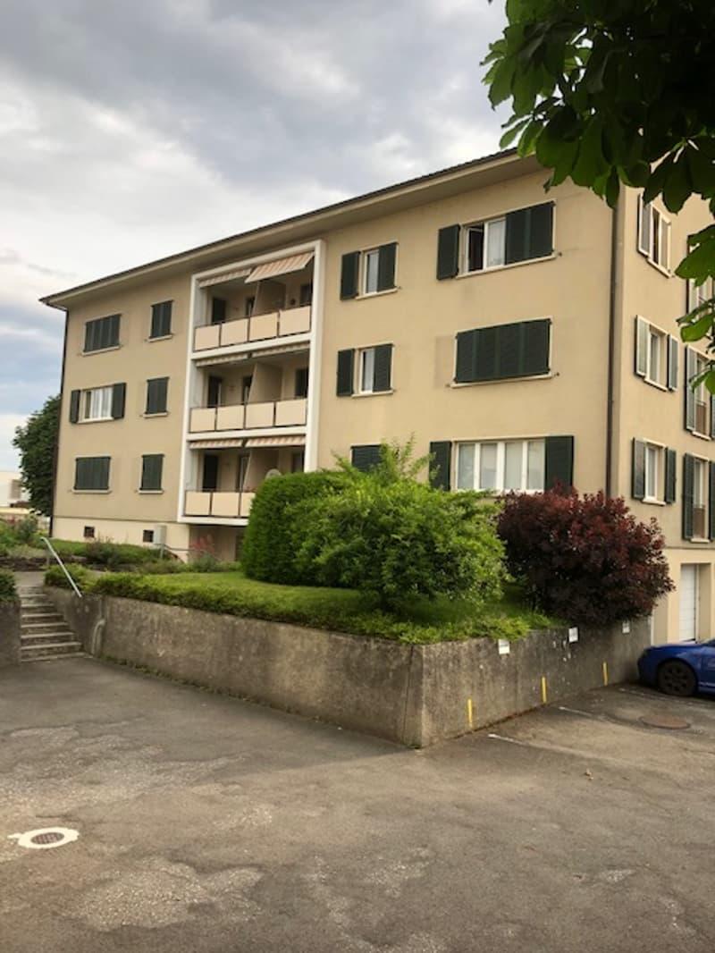 Moderne Wohnung im Zentrum von Möhlin