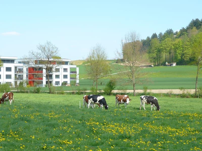 Eigentumswohnung an unverbaubarer Lage mit Aussicht ins Grüne (2)