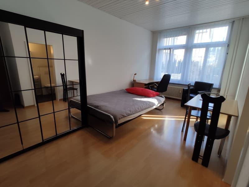 Möblierte 1.5-Zimmer-Wohnung an zentraler Lage