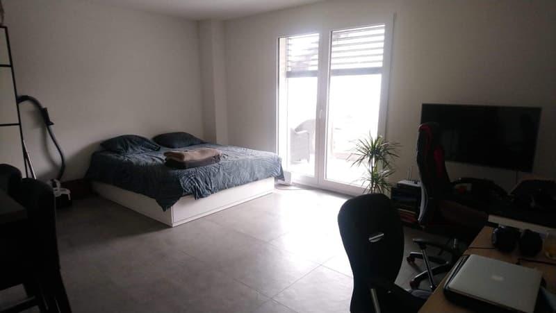 Joli appartement 1.5 pièces dans nouvelle construction proche de Lausanne (1)